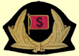 cap badge logo